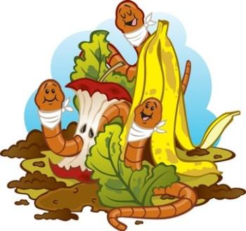 Vermicultura: hacer vermicompost o compost de lombriz