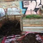 Cómo hacer Compost   Trucos y consejos