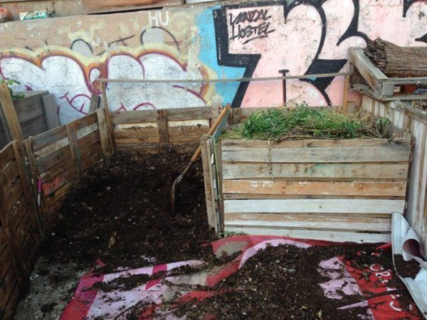 Compost para abonar el huerto ecológico
