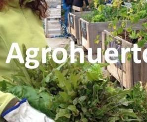 Agrohuerto.com - Huertos urbanos ecológicos