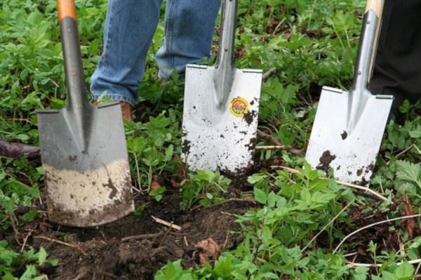 Palas para voltear tierra en el huerto