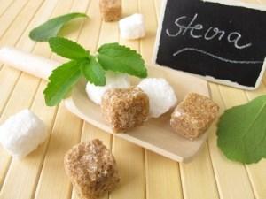 Cultivo de Stevia en el Huerto paso a paso: Poda, Riego, Cosecha y más
