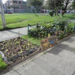 Huertos urbanos en Bogotá – #QueremosConocerTuHuerto