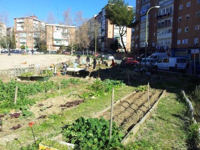 La Huerta de la Alegría en el distrito de Ciuad Lineal de Madrid (Fuente: www.huertodelalegria.blogspot.com.es)