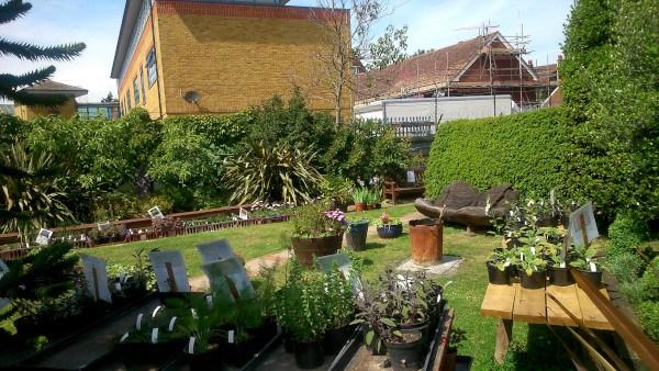 Zona central del jardín y huerto en WALWORTH GARDEN FARM