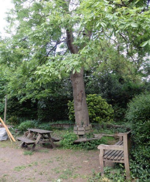 community gardens London