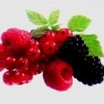 Frutos silvestres: Arándanos y Frambuesas en el huerto