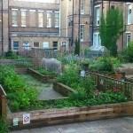 5 razones para tener Huertos en Hospitales. Huerto del hospital St. Charles (Londres)