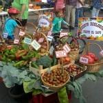 Navarrevisca y sus iniciativas ecológicas: La Feria del Hortelano