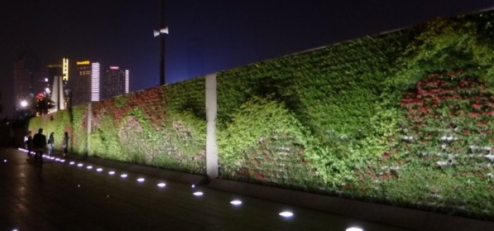 Jardines verticales en Shanghai