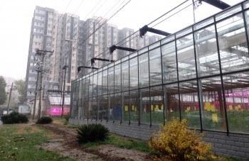 Hortícolas en invernadero en el National Engineering Research Centre for Vegetables