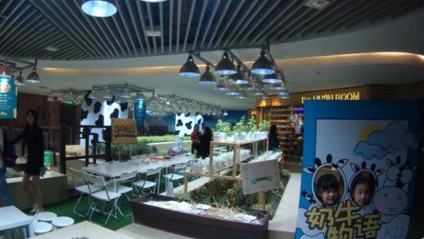 Aquí tenemos una perspectiva del K11 urban farm
