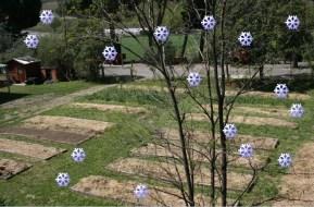 Cómo hacer un huerto en invierno: 7 labores fundamentales