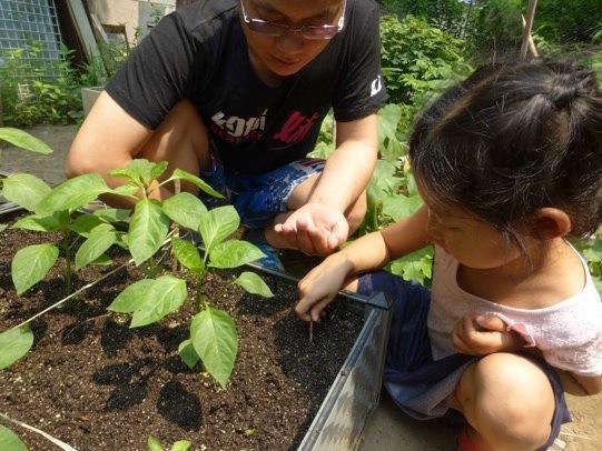 Niña aprendiendo a cultivar plantas en un huerto comunitario en Beijing