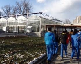 Invernaderos de huerto escolar en Pekín