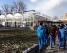 Huerto escolar en China: Shangzhuang middle school