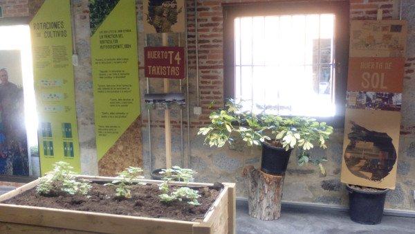 Muestra de sustrato ecológico en meseta de cultivo