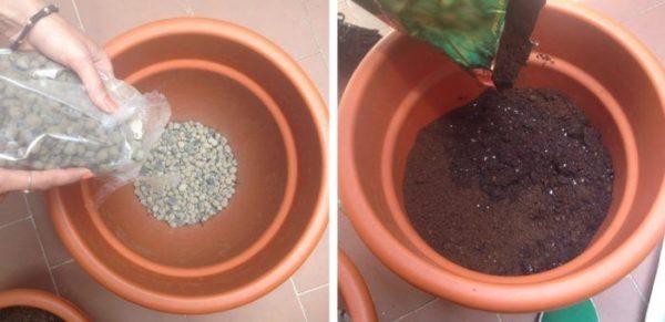 Capa de drenaje con grava o arcilla expandida bajo el sustrato para cultivar cebollas