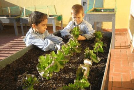 niños cultivando un huerto en casa