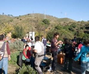 Huertos en Barcelona: huertos comunitarios y escolares