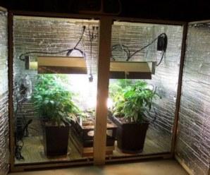 fabricar un armario de cultivo