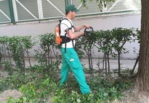 Herramientas Eléctricas para el Jardín: qué son y qué ventajas tienen