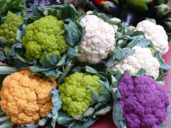 Plagas y enfermedades de la coliflor