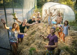 Voluntariado en Huertos y Granjas ecológicas: la Organización WWOOF