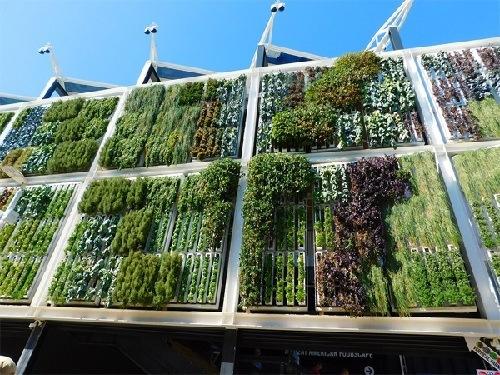 Instalación de jardines verticales modulares en pabellón de exposición, Milán.