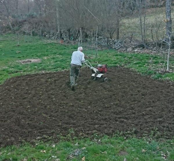 cuidar el suelo del huerto