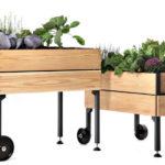 Mesa de cultivo para el huerto urbano en casa. Tipos de mesas de cultivo