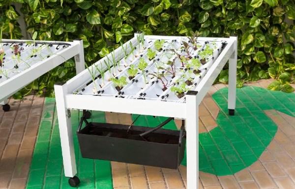 mesa de cultivo hidropónico