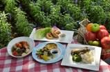 Técnicas Ecológicas 【 Agricultura orgánica 】Beneficios de los alimentos eco