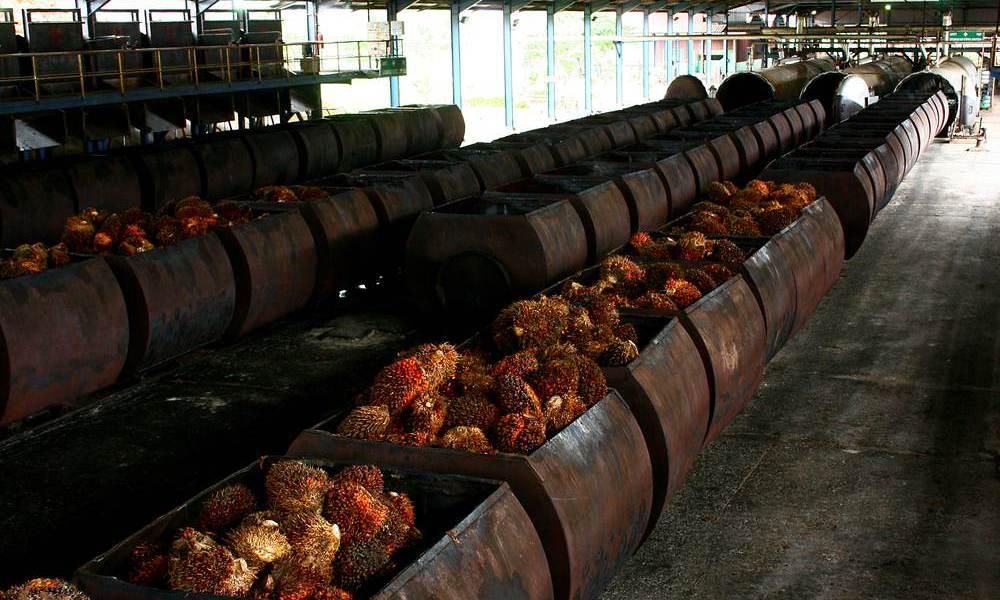 daftar pabrik kelapa sawit di Sumatera - agroindustri