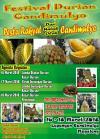 Festival Durian Candimulyo - Pesta Durian 2021, Saatnya Pesta Durian Para Pecinta Super Indo Supermarket Facebook