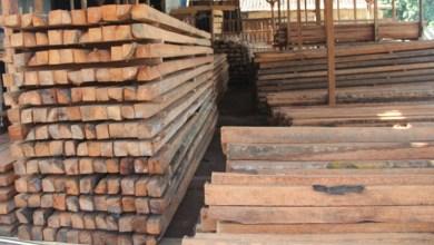 Photo of Harga Lengkap Bahan Bangunan Terkini Wilayah Jatim