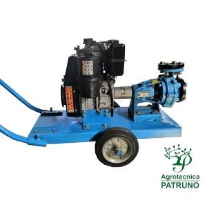 Motopompa diesel motore Lombardini