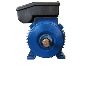 Motore elettrico HP 0,75