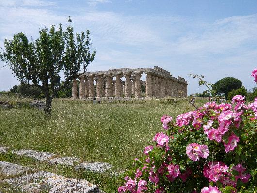 Tempio di Hera Paestum
