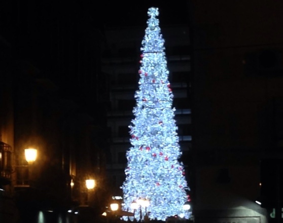 albero 2015