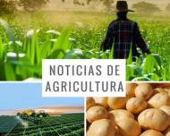 noticias-de-agricultura