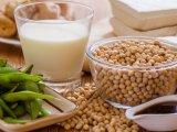 El mercado vegetariano, una breve revisión