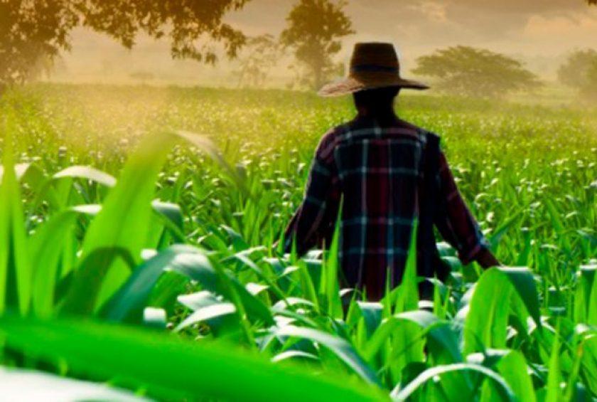 Noticias agrícolas