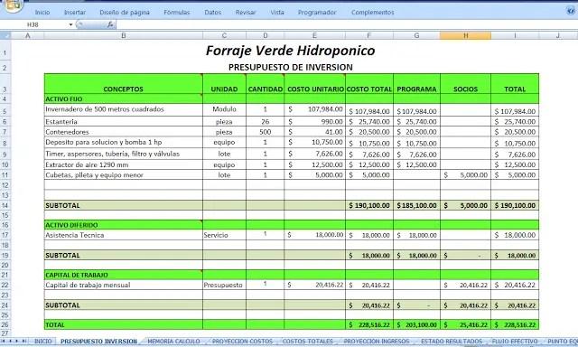 Presupuesto de inversion de Forraje verde hidroponico
