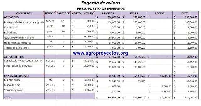 Ejemplo de presupuesto de inversión proyecto de ovinos INTEGRA-INAES 2015