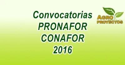 Convocatorias PRONAFOR CONAFOR 2016