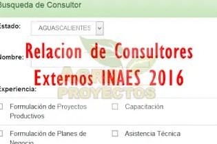 Relacion de consultores INAES