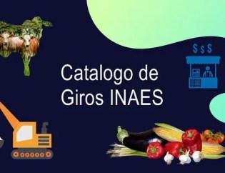 Catalogo de giros y actividades giros INAES