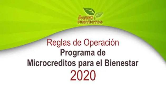 Programa de microcreditos para el bienestar