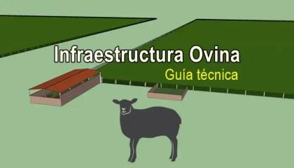 Diseño de infraestructura ovina